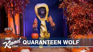 Jimmy Kimmel's COVIDSafe Halloween Costume Pageant