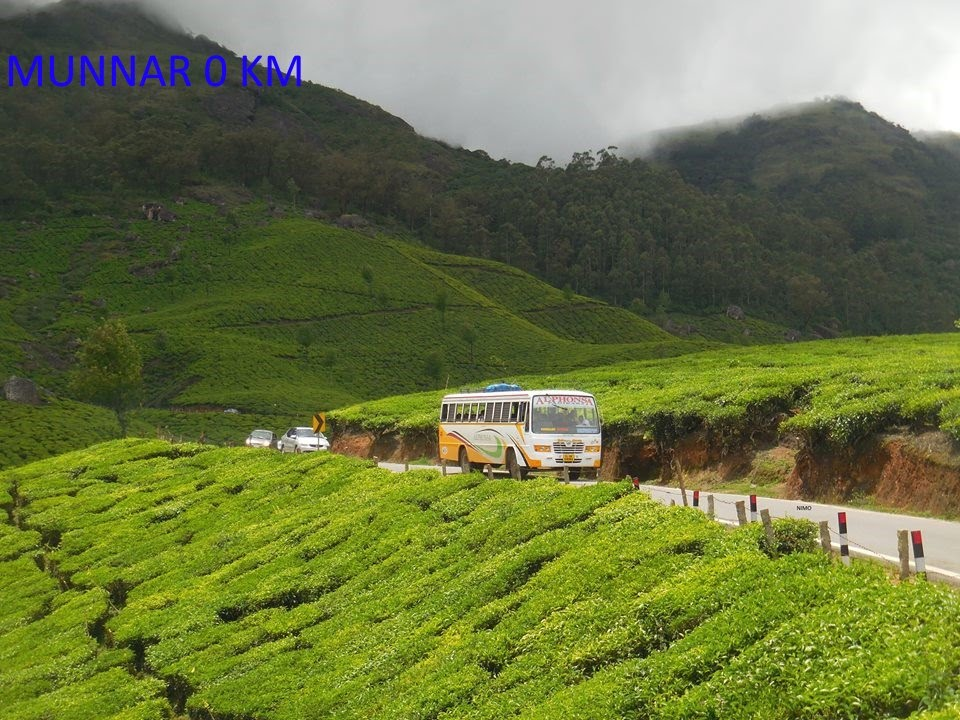 Download Munnar Kerala | Waterfalls | Tea garden | Dam | Fog | Spice garden