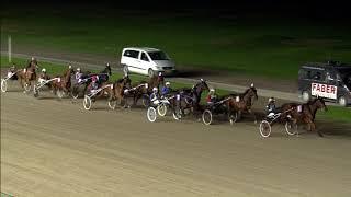 Vidéo de la course PMU DERBY DES 2 ANS