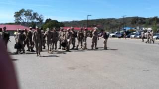 Infantry Marine