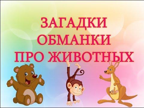 Загадки обманки для детей с ответами. Загадки для детей про животных с ответами. Загадки