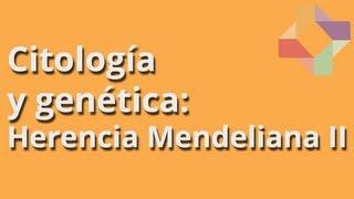 Herencia Mendeliana II - Citología y Genética - Educatina