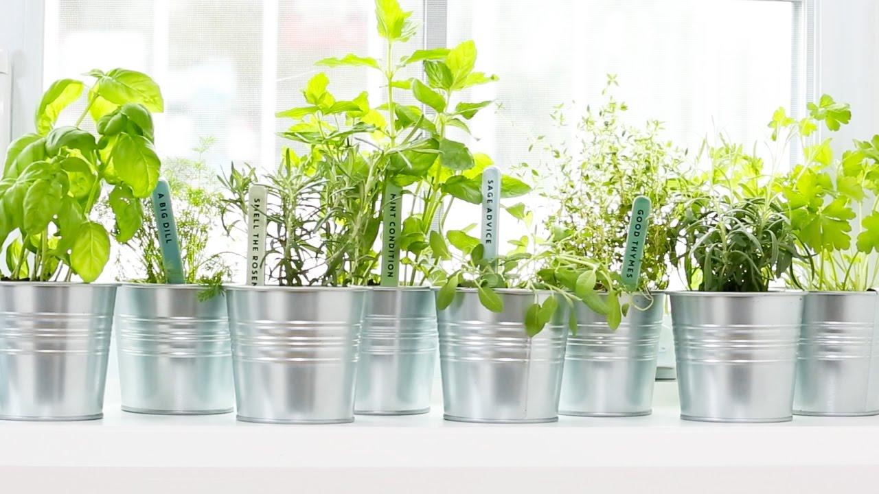 Watch 4 Herbal Hacks That Will Make Your Hormones Work Better video