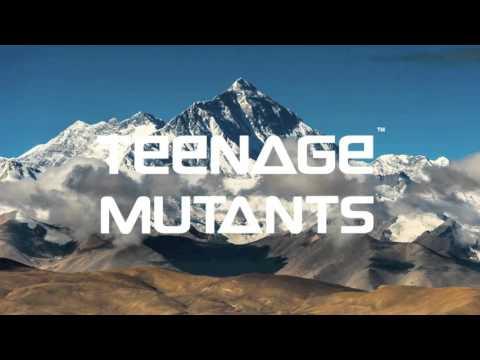 Teenage Mutants - Take Me Higher (Original Mix)