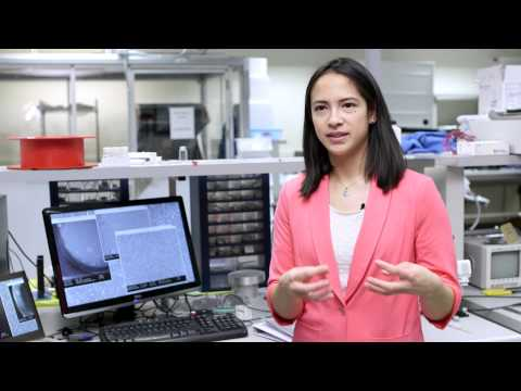 Sierra: The Next Generation Biosensor - Nanotechnology Engineering