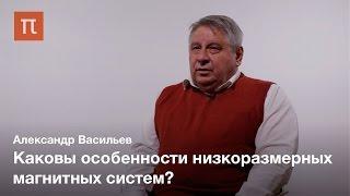 Низкоразмерный магнетизм - Александр Васильев