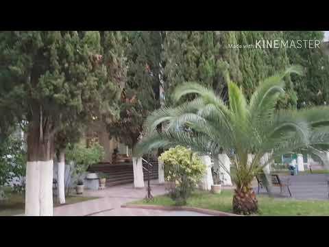 Абхазия, дом отдыха Челюскинцев, Гагра, сентябрь 2019