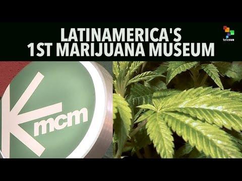 Latin America's 1st Marijuana Museum