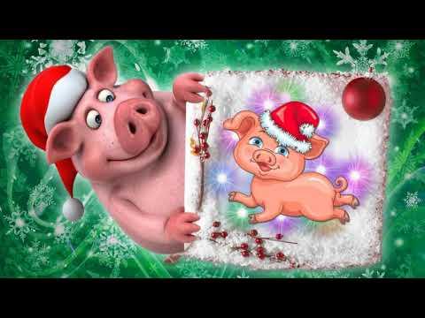 К нам приходит год свиньи! - Видео приколы ржачные до слез