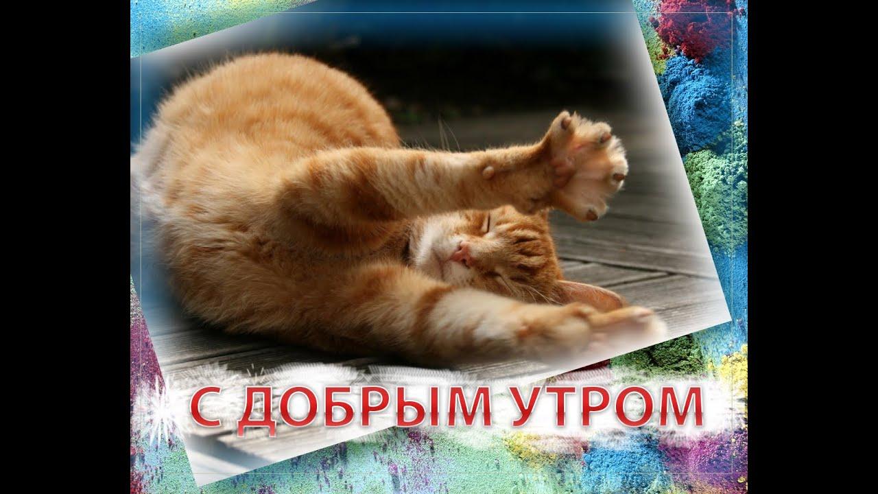 Спортсменки анал - видео / bytop @ Vaginko