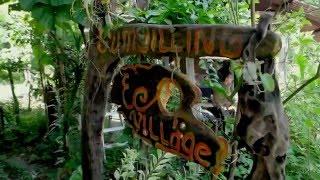 Eko Brunei - Adventure and Eco Tourism in Brunei