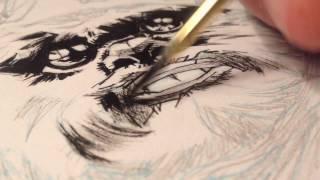 Star Wars - Ewok brush and ink illustration