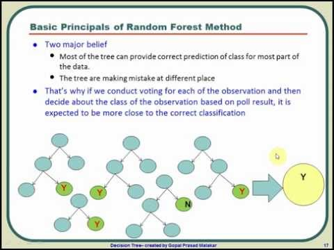 What is Random Forest Algorithm? A graphical tutorial on how Random Forest algorithm works?