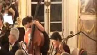 Budapest Strings - Haydn Festival