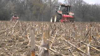 Fiat f130 and M135 plowing