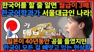 한국어를 하면 월급이 3배인 나라, 일본이 40년 들인 공을 한국에게 모두 빼앗기는 상황