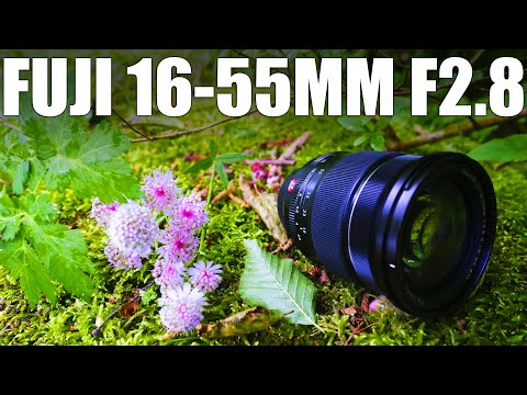 Fujifilm XF 16-55mm F2.8 - Is Fuji's most versatile lens worth the money?