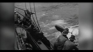 Tuna fishing rare Triple Polling