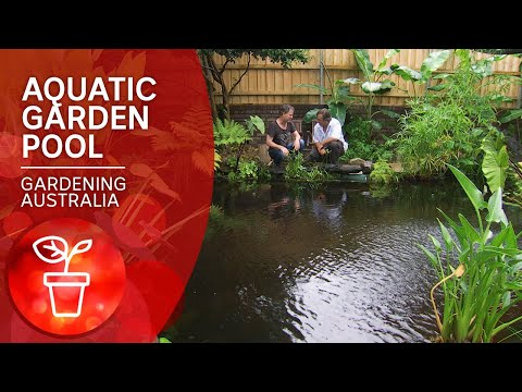 Convert Your Pool Into A Pond | DIY Garden Projects | Gardening Australia