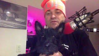 АК live наша собака Fin и новое расписание стримы о моделизме на Твиче