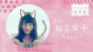 """有村架純がキュート過ぎる""""動物女子""""に!ねこ、いぬ、ワニ…8種類のWEBムービー公開! 「wicca」WEB限定ムービー「どうぶつ恋図鑑」 #Kasumi Arimura #Wicca"""