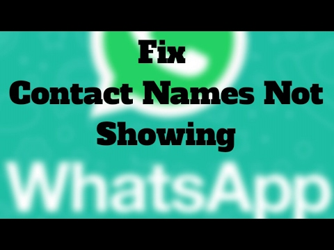 Fix All the Errors and Problems with WhatsApp on Android 1