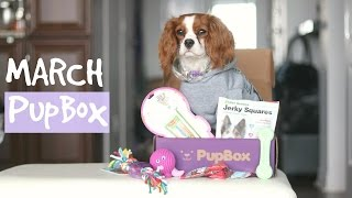 UNBOXING March Pupbox | Dog Monthly Subscription Box | Herky & Milton Cavalier King Charles thumbnail