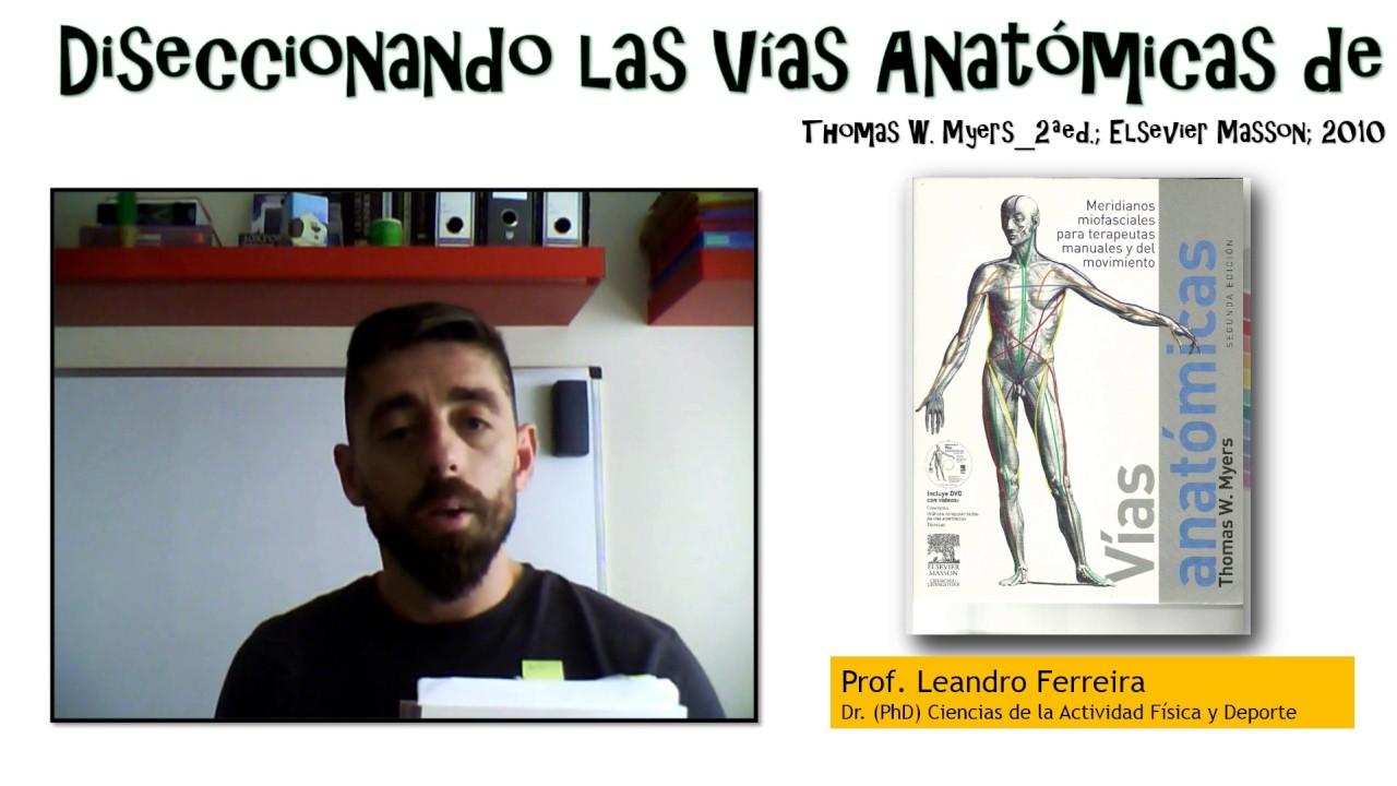 Diseccionando las Vías Anatómicas_S0 - YouTube