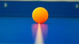 6 апреля Всемирный день настольного тенниса (Word Table Tennis Day)
