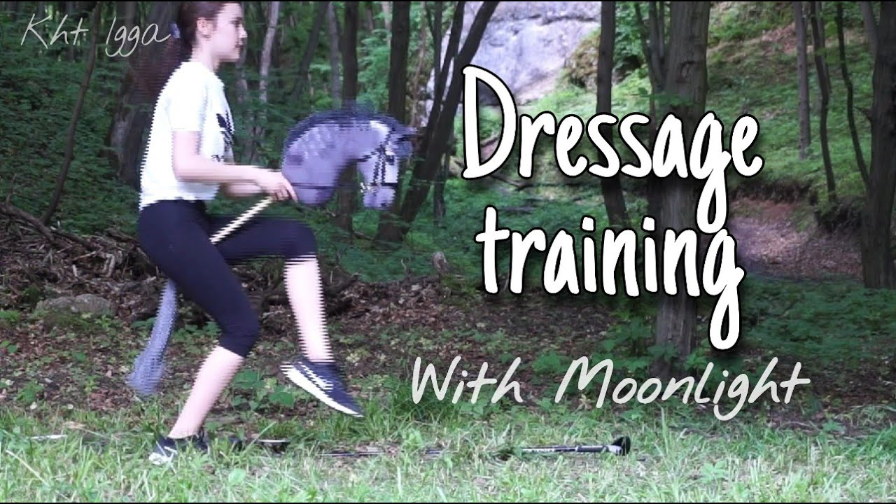 Dressage training with Moonlight / Trening ujeżdżeniowy z Moonligtem * Kht Igga*