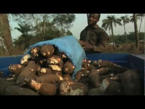 Sierra Leone Food Security