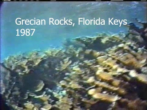 Reefs of the Past: Grecian Rocks, Florida Keys, 1987