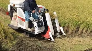 Amazing Agriculture Machine - Technology Harvesting and Planting