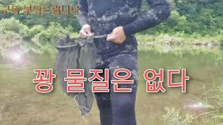 다슬기를 잡아 김밥 재료로 해봤습니다