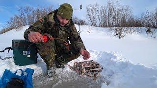 Рыбалка с одной лунки Гора окуней на льду Глухозимье