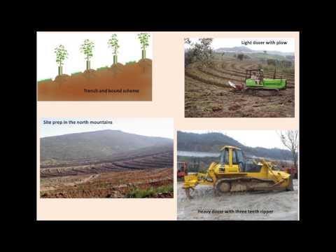 Fifty years of forestry in Portugal
