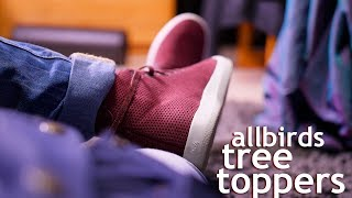allbirds Tree Toppers Review! (High Tops)