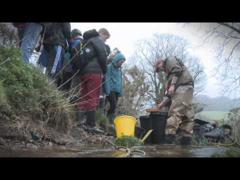 First Year Environmental Science Field Course
