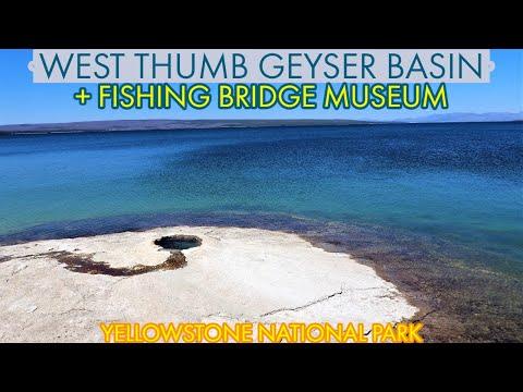 West Thumb Geyser Basin + Fishing Bridge Museum - Yellowstone National Park