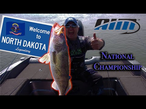 HUGE Walleye Caught In AIM National Championship