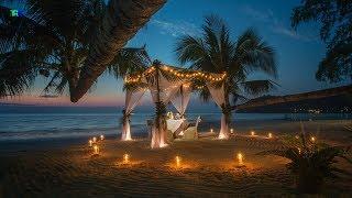 Romantic Wedding Dinner Jazz Music Playlist | Easy Listening Background Wedding Dinner Pop Music