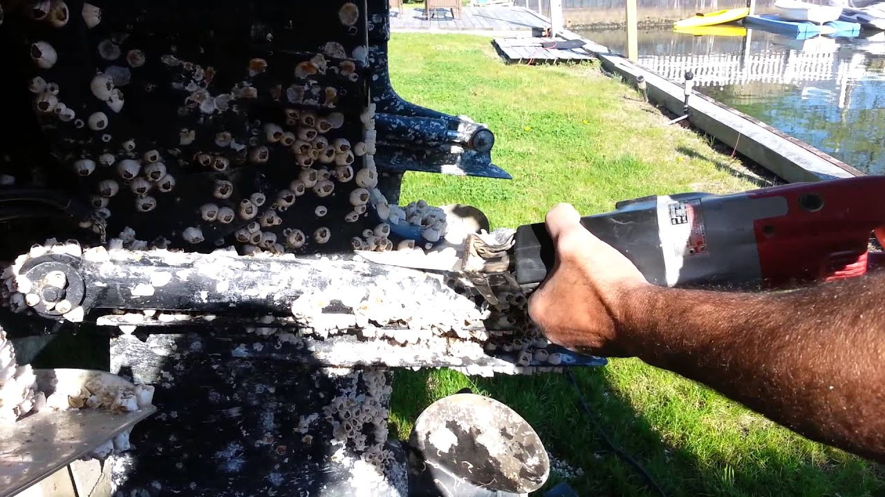 Easiest Way To Remove Barnacles From Boat or Out Drive - YouTube