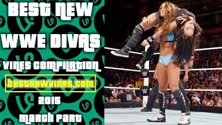 wwe vines compilation wwe vines 2015 new wwe vines www divas compilation march 2015