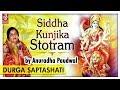 Siddha Kunjika Stotram |सिद्ध कुंजिका स्तोत्र | Anuradha Paudwal | Mantra | Devotional Song