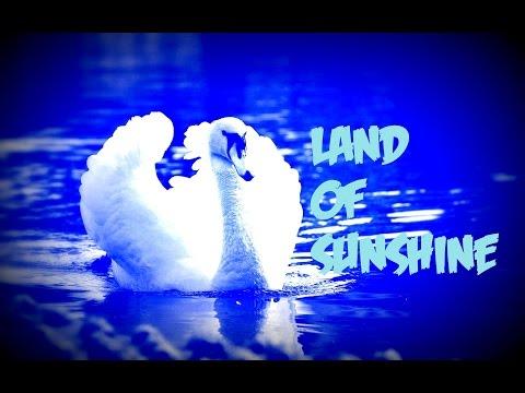 Faith No More - Land Of Sunshine | Lyrics y Subtítulos Inglés - Español