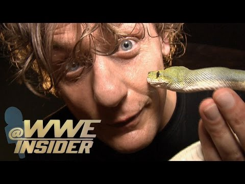 @WWEInsider: Snakes and Lizards Takeover the show!