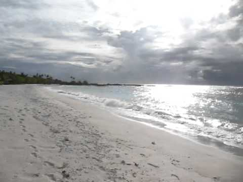 Falealupo Beach Fales, Savaii, Samoa