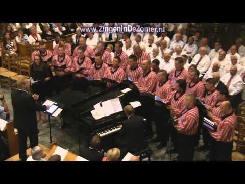 Verootmoediging - Zingen in de Zomer 2014