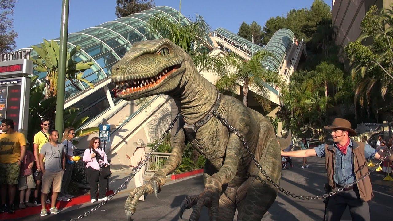 Raptor Encounter At Universal Studios Hollywood Jurassic World Jurassic Park Tango Dinosaur Live Youtube Encuentra aquí reseñas, lo que. raptor encounter at universal studios hollywood jurassic world jurassic park tango dinosaur live