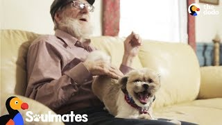 Dog Rescued From Neglect Helps Man Coping With Dementia | The Dodo Soulmates